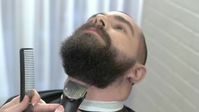 Beard trimming in barbershop. stock video