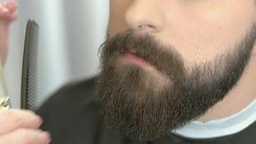 Beard trimming, comb and scissors. stock footage