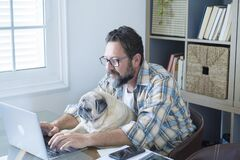 Free Bearded Adult Man Work At Home In Office Room With His Friend Dog - People And Modern Job Lifestyle With Internet Connection And Stock Photography - 216667622