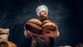 A bearded baker wearing a uniform showing fresh bread standing next to a table, decorated with delicious bread loaves. Baguettes and muffins in a dark studio royalty free stock photo