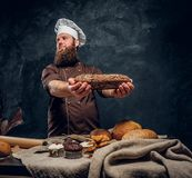 A bearded baker wearing a uniform showing fresh bread standing next to a table, decorated with delicious bread loaves. Baguettes and muffins in a dark studio stock image