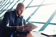 Bearded bald man preparing report. Handsome managing director examining paperwork in bight light office interior sitting next to the window, attractive business royalty free stock photography
