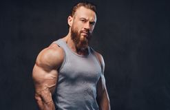 Bearded bodybuilder dressed in a tank top. royalty free stock photos