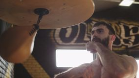 Bearded boxer training with speed bag. Young boxer practicing punches. Before competition in gym. Boxer exercising kicks on speed bag in slow motion. Boxer stock video footage