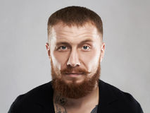 Bearded brutal criminal man with tattoo Stock Image