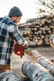 Bearded brutal lumberjack wearing plaid shirt sawing tree with chainsaw for work on sawmill. Wooden sawdust fly apart. Vertical royalty free stock images