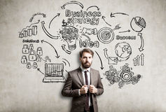 Bearded businessman and a business strategy sketch Royalty Free Stock Photography