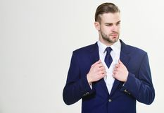 Bearded businessman in formal suit. Successful businessman get ready for conference. Serious motivated focused. Bearded businessman in formal suit. Successful stock image