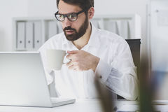 Bearded businessman reading his email messages. Portrait of a bearded businessman wearing glasses and a white shirt who is holding his coffee cup and looking at Royalty Free Stock Photography