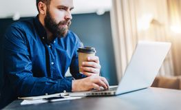 Bearded businessman working on computer at table,drinking coffee.Man analyzes information, data, develops business plan. Young serious bearded businessman Royalty Free Stock Photo