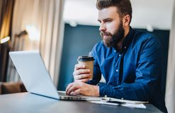 Bearded businessman working on computer at table,drinking coffee.Man analyzes information, data, develops business plan. Young serious bearded businessman Stock Photos