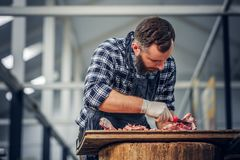Bearded butcher cut fresh bacon meat. Bearded butcher dressed in a fleece shirt cut fresh bacon meat royalty free stock photography