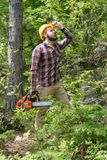 A bearded chainsaw worker in the forest. Portrait royalty free stock photo
