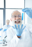Bearded chemist holding test tube with reagent and gesturing. Excited bearded chemist holding test tube with reagent and gesturing Stock Photos