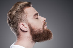 Bearded handsome. Royalty Free Stock Photo