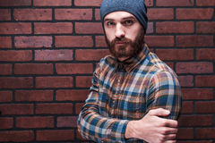 Bearded handsome. Stock Photography