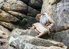 Bearded hermit in the rocks. Gaze into the distance Stock Photos
