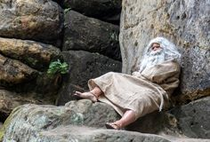 Bearded hermit sitting at the rock Stock Photography