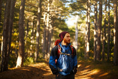 Bearded hiker man walks in a pine yellow autumn forest. Backpacker hipster enjoys fall landscape. Royalty Free Stock Images