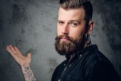 Bearded hipster male in a black shirt. Stylish tattooed, bearded hipster male in a black shirt posing on grey background Royalty Free Stock Photography
