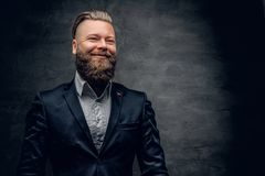 Bearded hipster male in purple suit. Bearded hipster male in purple suit isolated on grey vignette background Royalty Free Stock Photo