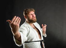 Bearded karate fighter Royalty Free Stock Photos