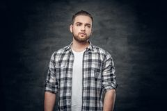 Bearded male dressed in a fleece shirt over grey background. Studio portrait of bearded hipster male dressed in a fleece shirt over grey background Stock Image