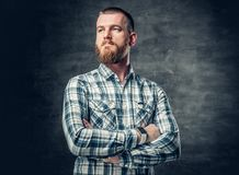 Bearded male dressed in a fleece shirt over grey background. Stock Photo