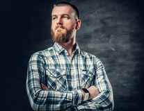 Bearded male dressed in a fleece shirt over grey background. Stock Photos