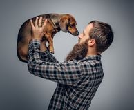 Bearded male dressed in a plaid shirt holds  badger dog. Urban bearded male dressed in a plaid shirt holds a cute badger dog Stock Photo