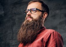 A bearded male in eyeglasses dressed in a red shirt. stock photos
