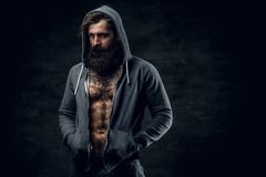 Bearded male with tattoo on a chest, dressed in a grey hoodie. Portrait of brutal bearded male with tattoo on a chest, dressed in a grey hoodie Stock Photos