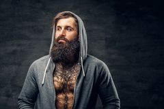Bearded male with tattoo on a chest, dressed in a grey hoodie. Portrait of brutal bearded male with tattoo on a chest, dressed in a grey hoodie Stock Images