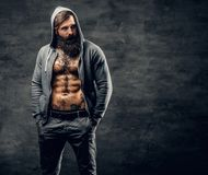 Bearded male with tattoo on a chest, dressed in a grey hoodie. Portrait of brutal bearded male with tattoo on a chest, dressed in a grey hoodie Stock Photo