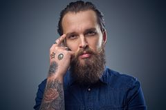 Bearded male with tattoos on arms. Bearded male with tattoos on arms, dressed in denim shirt over grey background Royalty Free Stock Images