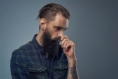 Bearded male with tattoos on his arms. Portrait of bearded male with tattoos on his arms, dressed in a plaid flannel shirt over grey vignette background Royalty Free Stock Image