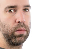 Bearded Man. A bearded man looking at the camera, with copyspace on the right of the image Royalty Free Stock Photography