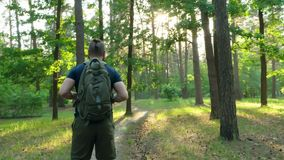 A bearded man with a backpack stands in the woods and looks around. The man starts walking along the forest path. The camera moves stock footage