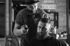 Bearded Man In Barbershop royalty free stock image