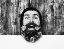 Bearded man, brutal caucasian amused hipster with gift decoration stars. Bearded man, long beard. Brutal caucasian amused hipster with colorful gift decoration stock photos
