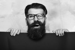 Bearded man, brutal caucasian hipster with moustache in glasses. Bearded man, long beard. Brutal caucasian unshaven amused hipster with glasses and moustache stock image