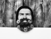 Bearded man, brutal caucasian smilling hipster with gift decoration stars stock photography
