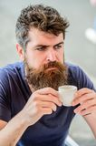 Bearded man in cafe. brutal male needs morning refreshment. drink espresso coffee. morning breakfast. Mature hipster stock photography