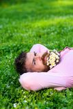 Bearded man with daisy flowers in beard lay on meadow, grass background. Man with beard on calm face enjoy nature. Unite. With nature concept. Hipster with royalty free stock photo