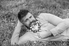 Bearded man with daisy flowers lay on meadow, lean on hand, grass background. Masculinity concept. Hipster with daisies. In beard looks attractive. Man with royalty free stock photo