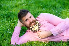 Bearded man with daisy flowers lay on meadow, lean on hand, grass background. Masculinity concept. Hipster with daisies. In beard looks attractive. Man with royalty free stock photography