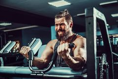 Man Doing Heavy Weight Exercise For Biceps On Machine In A Gym. Bearded Man Doing Heavy Weight Exercise For Biceps On Machine In A Gym Royalty Free Stock Images