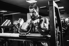 Man Doing Heavy Weight Exercise For Biceps On Machine In A Gym. Bearded Man Doing Heavy Weight Exercise For Biceps On Machine In A Gym Royalty Free Stock Photos