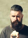 Bearded man eating apple Royalty Free Stock Image
