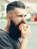 Bearded man eating apple Stock Images